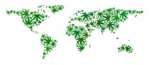 CBD Status Around The World