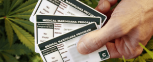 Steps to take to get a Medical Marijuana Card